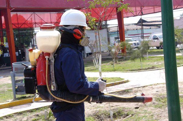 Fumigación complementará acciones emergentes en la colonia Victoria