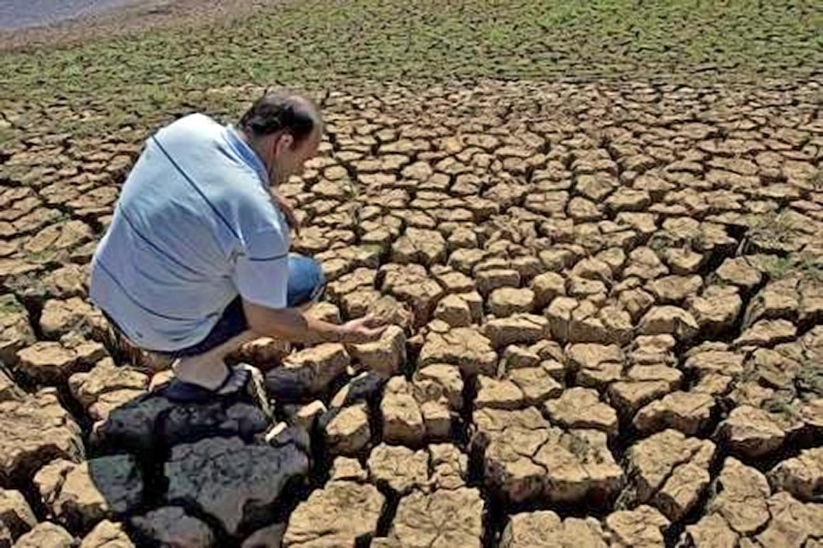 M s del 50 del suelo sufre de degradaci n por la sobre for Lo ultimo en suelos