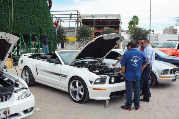 Todo listo para el 7° aniversario del Mustang Club Metrópoli Laguna