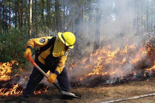 Arranca 2018 con 47% menos incendios forestales