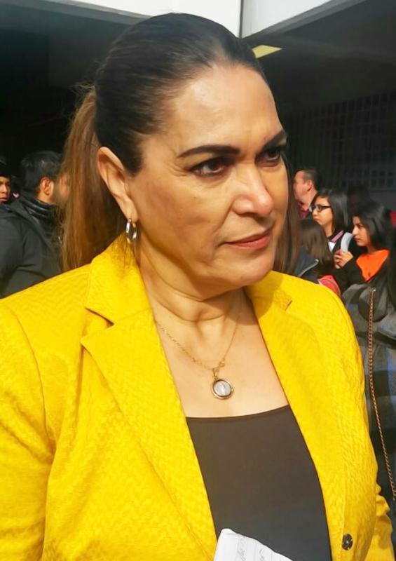Flor Estela Rentería Medina, diputada federal.