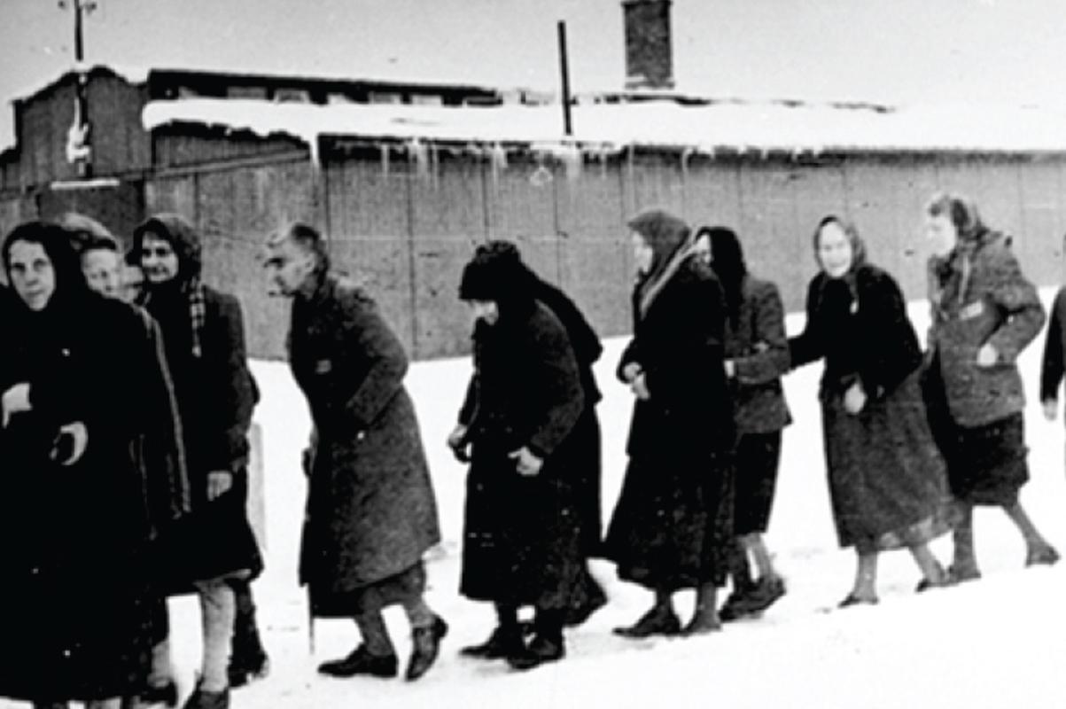 El holocausto ha trascendido históricamente para sensibilizarnos respecto al valor de la vida.