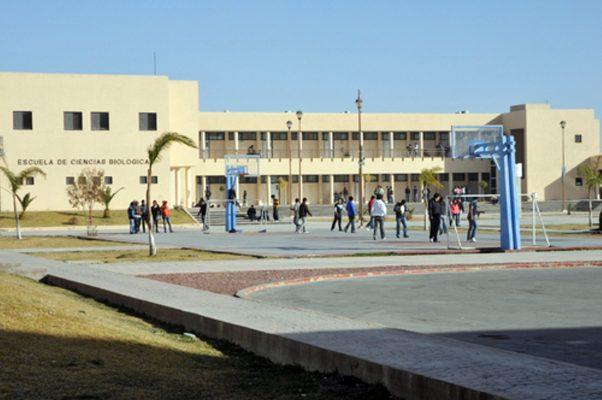 Con la presencia de 70 instituciones de nivel superior, La Laguna puede establecerse como un destacado clúster educativo.