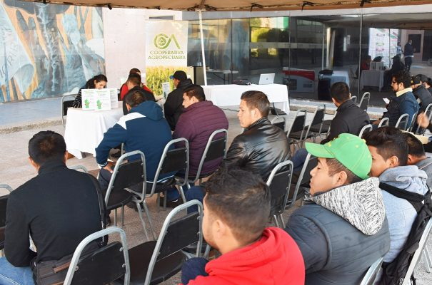 IMJUVE invita a aprovechar la oferta de plazas laborales en próximos eventos de reclutamiento