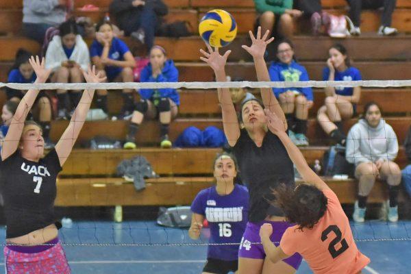 Intensa actividad de la Copa Torreón de Voleibol