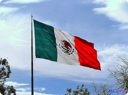 La Bandera, símbolo y orgullo