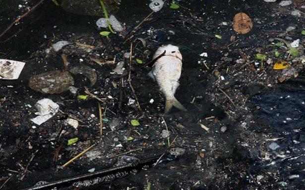 Más de 200 naciones prometen detener contaminación por plástico en el océano
