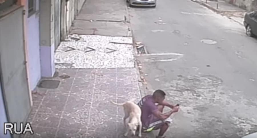 Perro callejero lo orinó; y como castigo, lo adopta