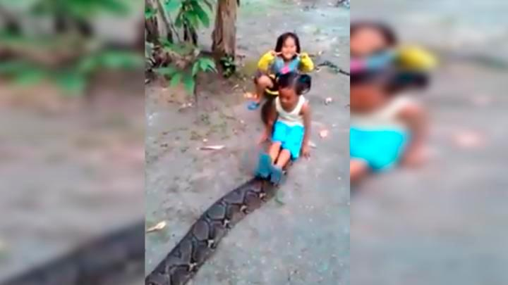 [VIDEO]   Niñas cabalgando una gigantesca anaconda