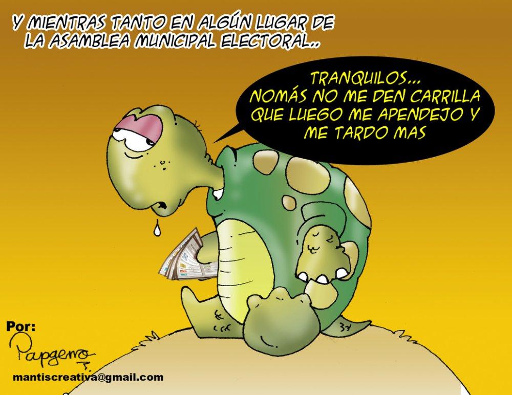 La 'tortuga' de la Asamblea Electoral