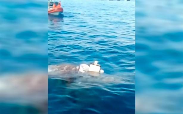 Reportan artefacto sospechoso en muelle de Cozumel: presumen es un explosivo