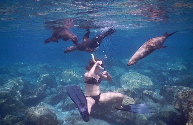 Cierre de la Isla Espíritu Santo colapsaría la actividad turística