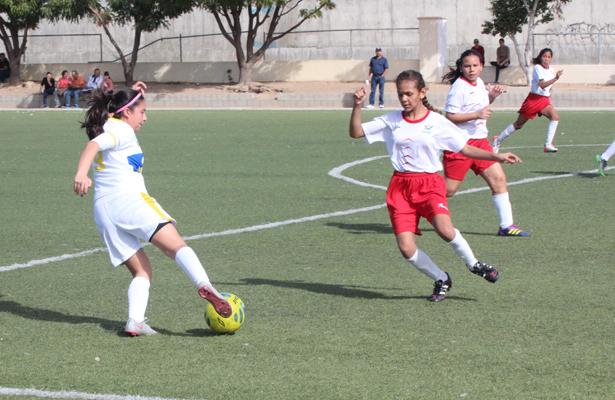 """Una gran primera edición del Torneo de Futbol """"Cabo Cup"""", se espera con la participación de 92 equipos en las diferentes categorías. / El Sudcaliforniano"""