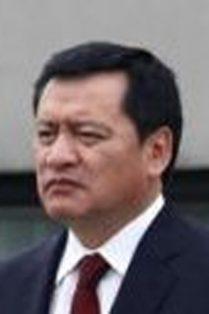 MIGUEL OSORIO CHONG.