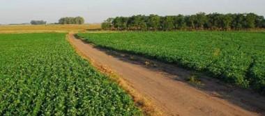 Elección del nuevo consejo directivo de la Asociación Agrícola