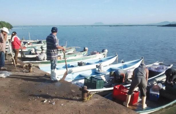 Escasez de camarón en San Carlos preocupa a pescadores