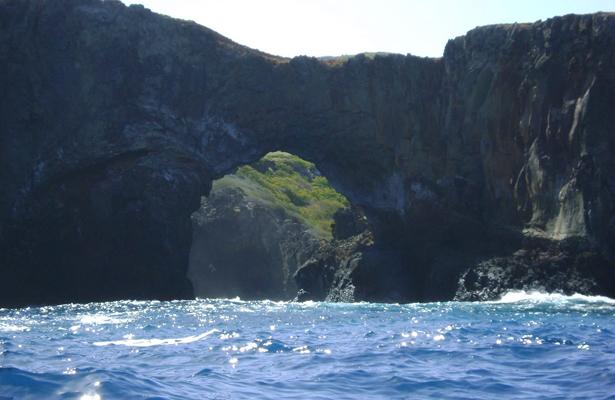 Declaratoria del Parque Nacional Islas de Revillagigedo impactará la economía