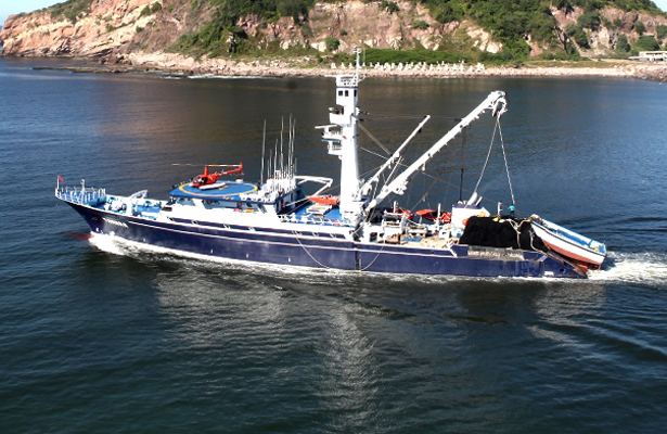Inicia la temporada de pesca de atún