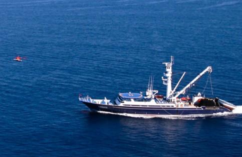 Barco Atun 2