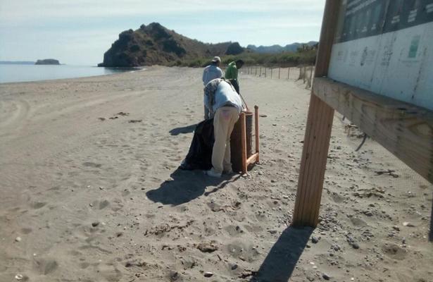 Seguimos trabajando en nuestras playas de Loreto: Zofemat