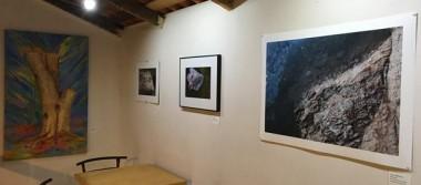 6 mujeres, artistas visuales exponen su trabajo