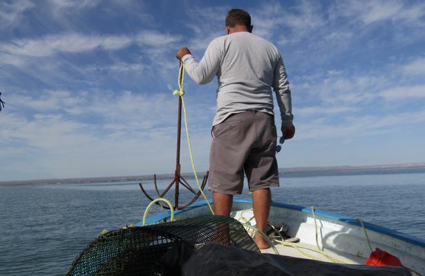 Pescadores de El Manglito, ejemplo de perseverancia