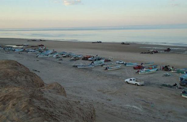 Continuarán actividades pesqueras en el Golfo de California