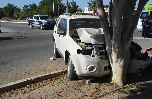 Conducía ebrio y chocó contra un árbol
