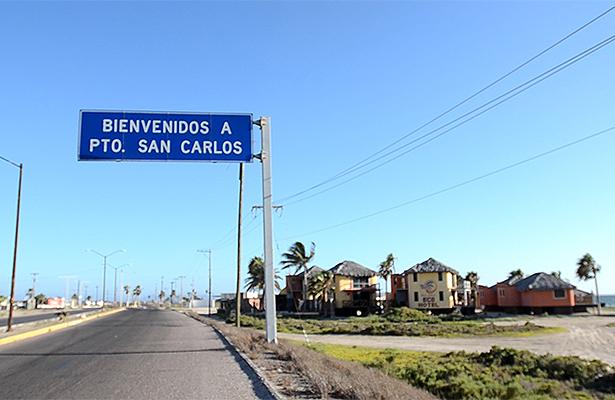 """Plaga de zancudos, """"nubes que oscurecen el cielo"""" en Puerto San Carlos"""