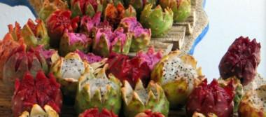 Invitan a Fiestas de la Pitahaya 2018