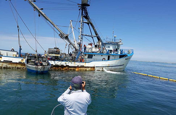 Aseguran barco sardinero en la Biósfera de Vizcaíno