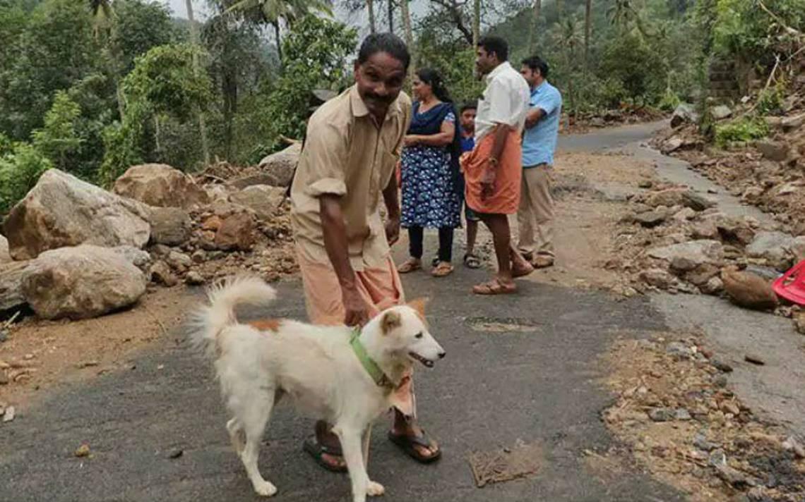 Héroe de cuatro patas. Perro salva a una familia de morir en deslave de tierra en India