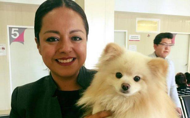 Construirán centro canino en Salamanca