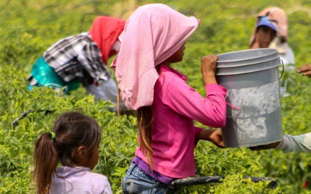 Urge prevenir la trata de personas en el campo, recomienda la CNDH