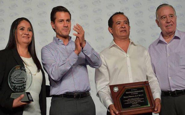 Peña Nieto pide a legisladores trabajar y no atender proyectos personales