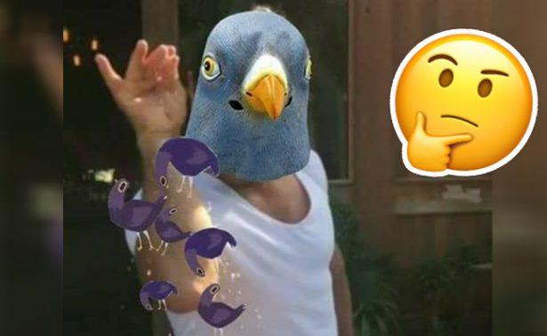 ? Video ¿De dónde rayos salió la paloma morada de Facebook?