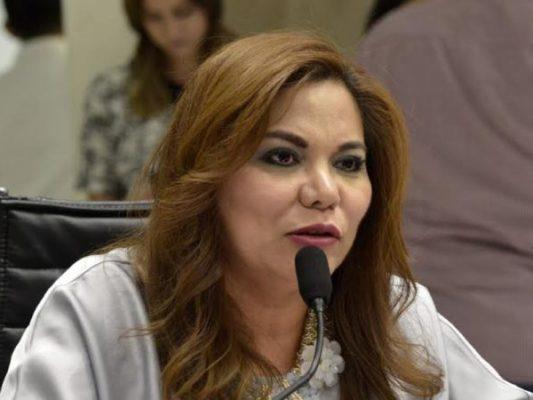 Faltaron propuestas para garantizar democracia: Lina Acosta