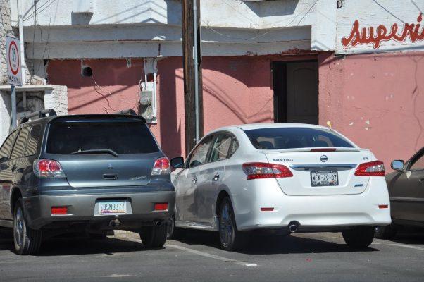 Abejas atacan a dos mujeres en un bar de la localidad