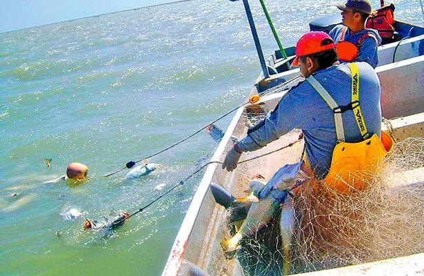 Concluye este mes compensación pesquera para los golfeños