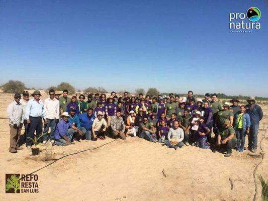 Cumplen meta de reforestación en delta del Río Colorado: plantan mil árboles