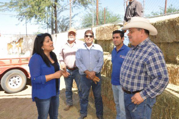 Entregan 50 pacas de alfalfa a Centro de Equino terapia la AVRC