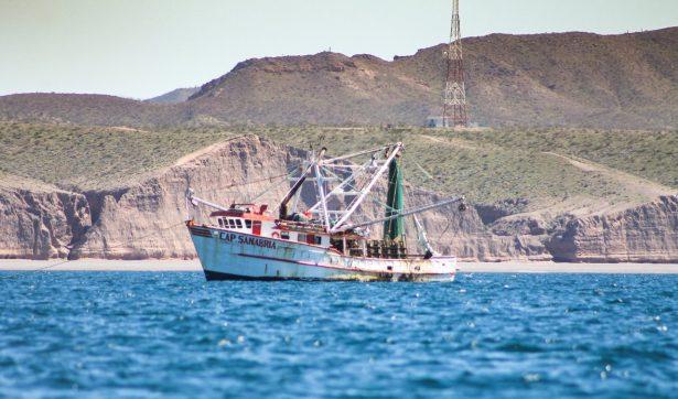 """Cierran"""" Alto Golfo a embarcaciones"""