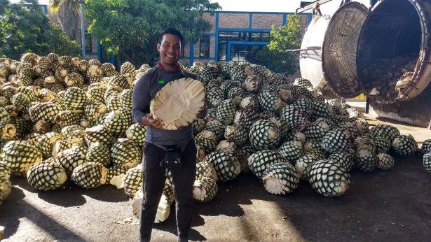 EN PEDALES POR MÉXICO: La magia de Tequila