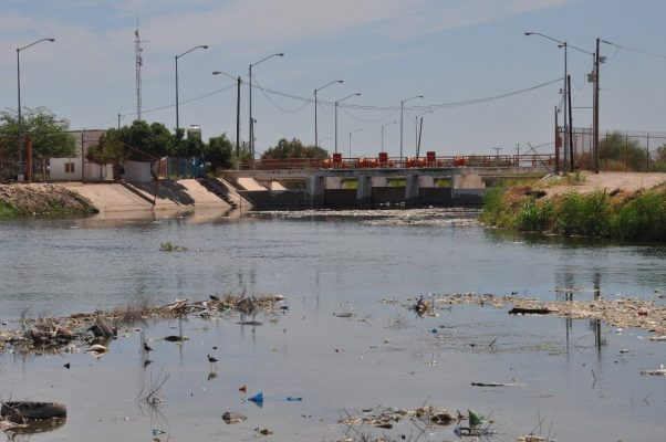 Asigna CILA aguas  contaminadas para riego del valle