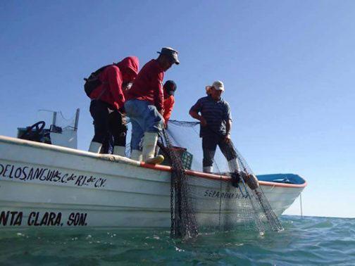 Necesidad orilló a ribereños a pescar