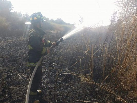 Salvan bomberos casas en colonia La Bolsa