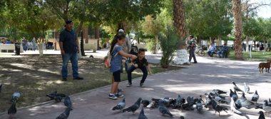 Disfrutan en el parque sanluisinos